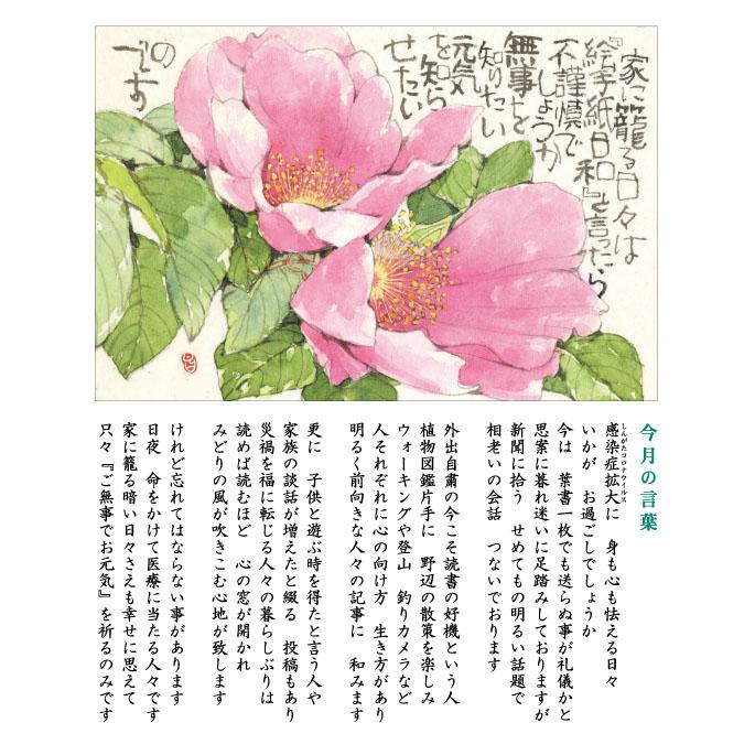 129号(2020.5)ハマナス/浜茄子
