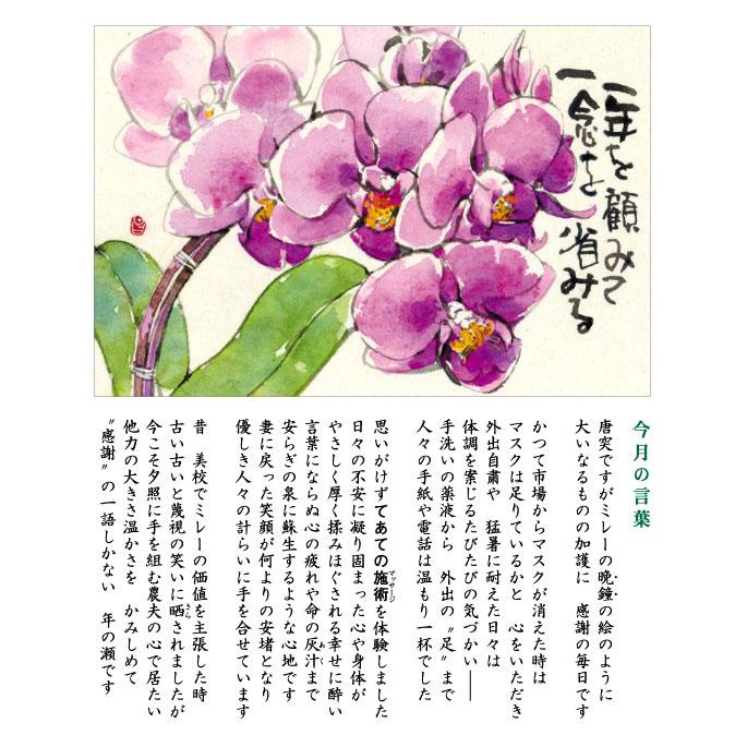 136号(2020.12)マイクロ胡蝶蘭