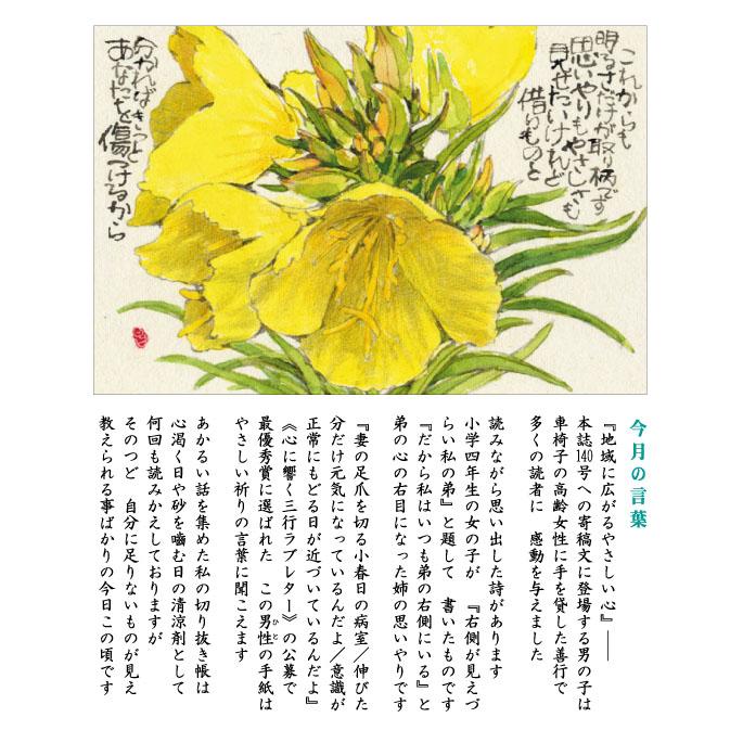 142号(2021.6)オオマツヨイグサ /大待宵草