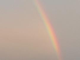 松戸でも虹が見えました