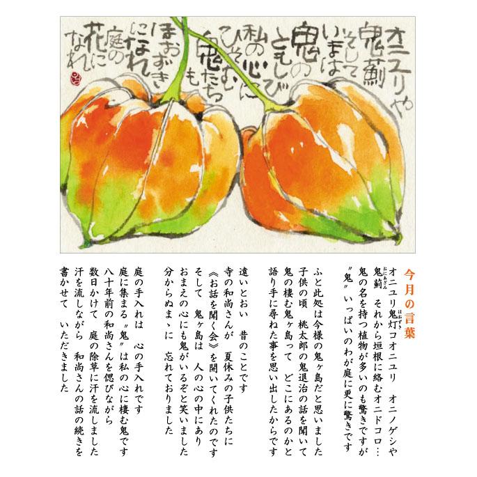 144号(2021.8)ホオズキ/鬼灯